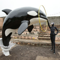 Killer whale at Banksy's Dismaland - Carefully selected by Gorgonia www.gorgonia.it